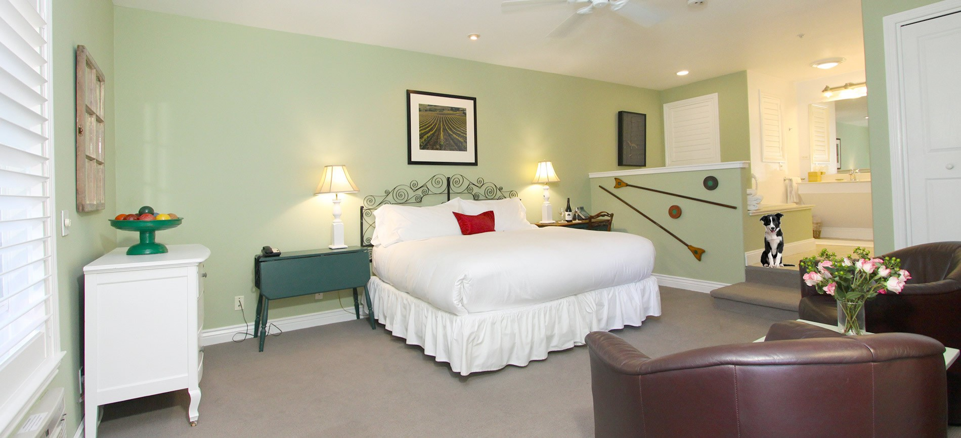 pet friendly guest room with bed, chairs and dog